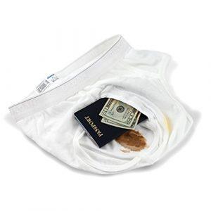 The Brief Safe Hidden Contents Travel Passport Wallet – Diversion Safe