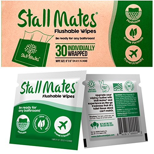 Stall Mates: Flushable, individually wrapped wipes for travel. Unscented with Vitamin-E & Aloe, 100% Biodegradable (30 on-the-go singles)