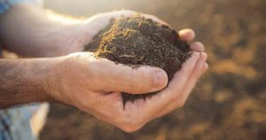 Earth Day: Learn Why Biodynamic Soils Are the Healthiest