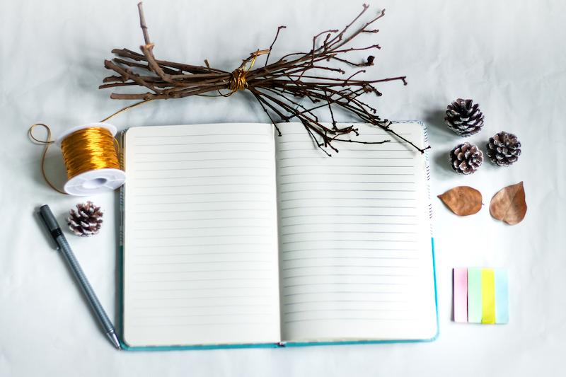 tara swart, journaling