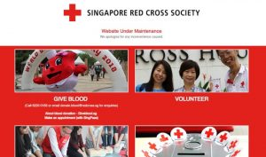 Personal data of more than 4,000 potential blood donors leaked, says Singapore Red Cross