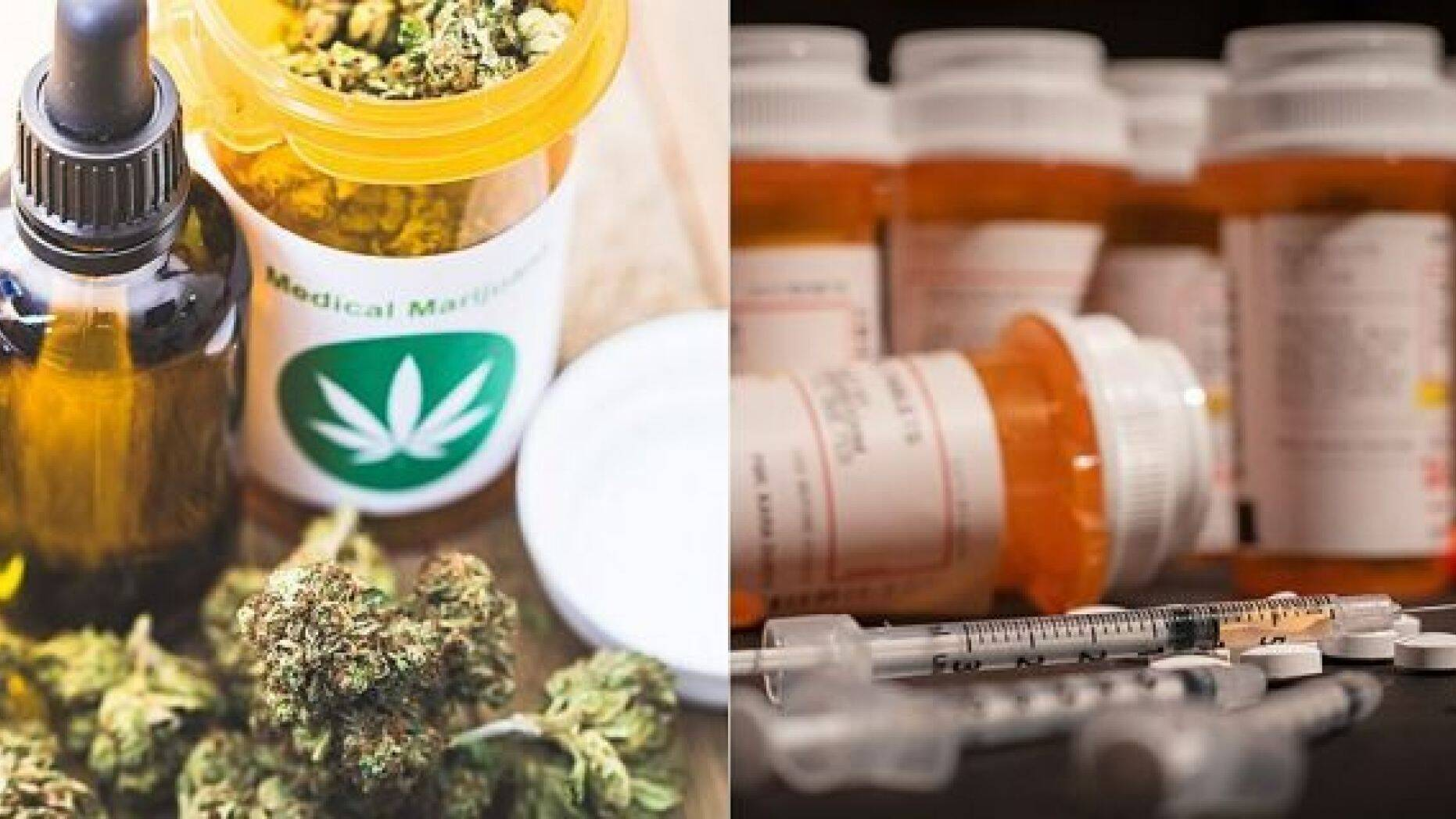 Colorado signed a bill on Thursday which will allow doctors to recommend medical marijuana to treat conditions they've previously used painkillers for.