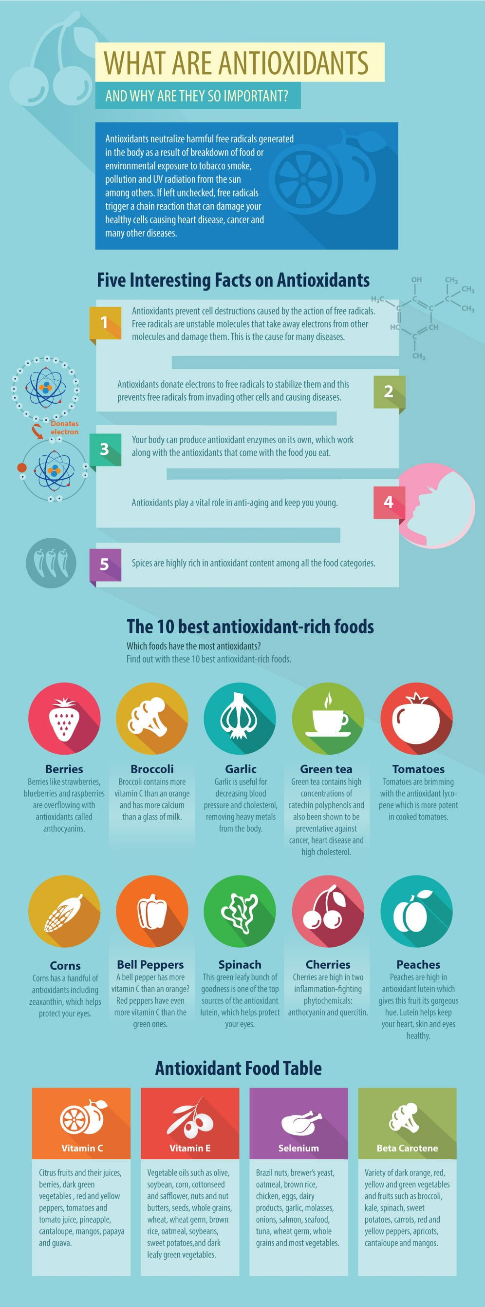 What Are Antioxidants Infographic