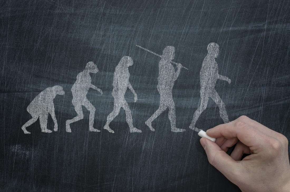 close up of hand drawing evolution of humans from primates
