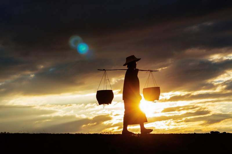 farmers-are-walking-at-sunset
