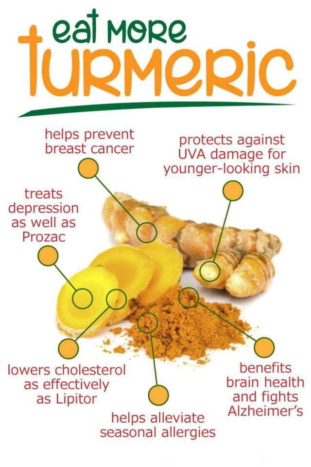 Turmeric Benefits Infographic