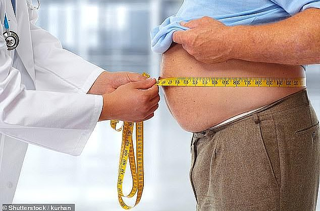 A new study from Aarhus University Hospital in Denmark has found that being overweight or obese increases the risk of all cancers, obesity and non-obesity related, by 12% (file image)