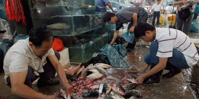 ​​​​​​​Seafood vendors prepare fresh fish at a wet market in Beijing, July 3, 2007. (Getty Images)