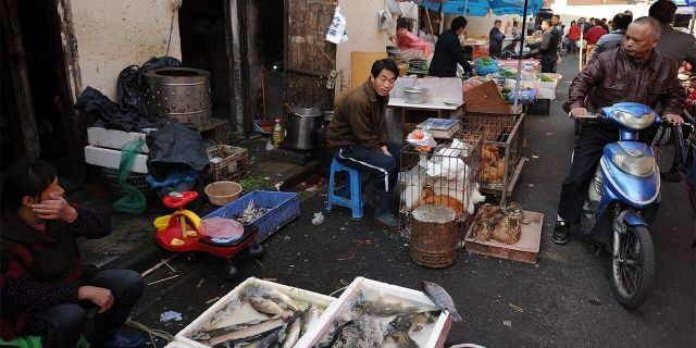 Vendors sell fish and poultry at an outdoor wet market in Shanghai, Nov. 15, 2012. (Getty Images)